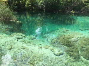 plitvice national parks croatia 5 tips for a visit