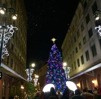 Christmas Tree on Fulton Street New Orleans.